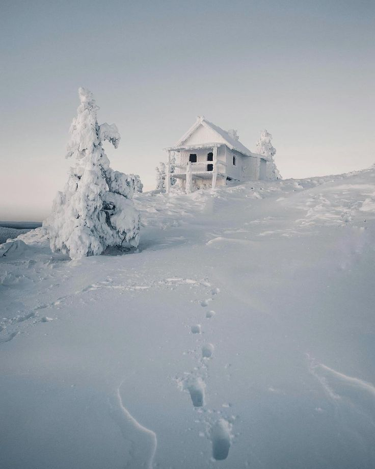 Fresh cold morning (Levi, Finland) by Konsta Punkka (@kpunkka) on Instagram
