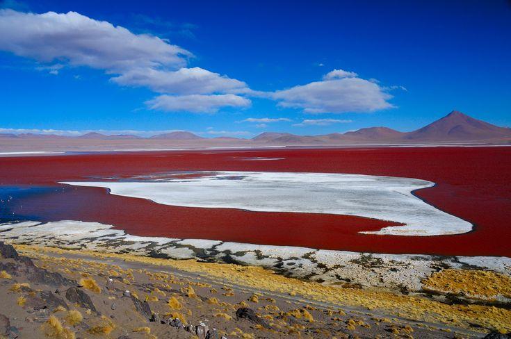 Bolivia_Red Lake near Uyuni