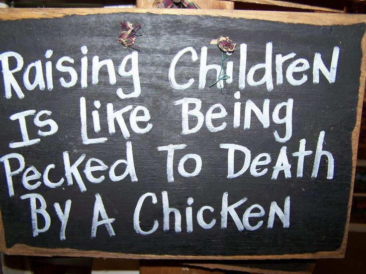 Chicken Funny Signs Quotes: Raising Children Is Like Being Pecked To Death By A