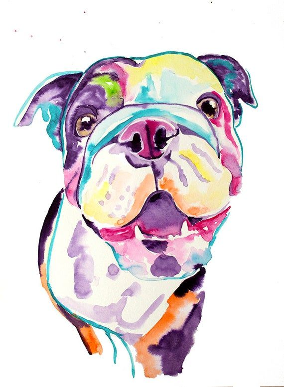 English Bulldog Watercolor Print Bulldog Dog Gifts Bulldog Art