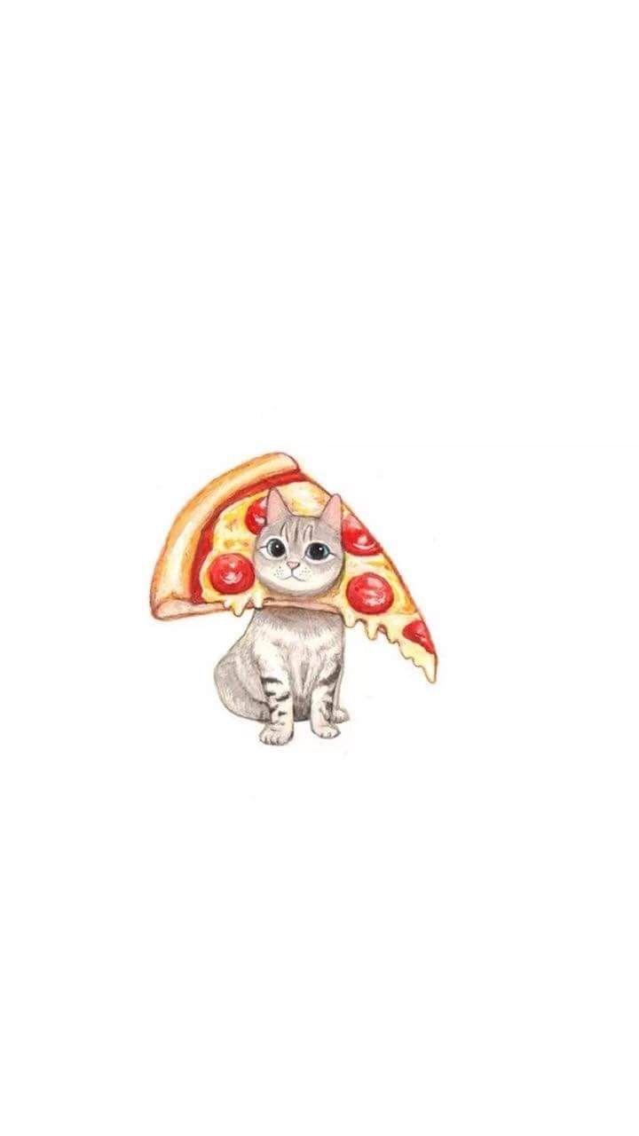 Pin By Mirai On Home Screen Funny Cat Wallpaper Cat