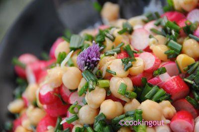 Salade pois chiches germés, radis à la mélasse de grenade et à la ciboulette