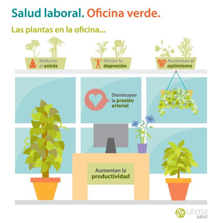 Infografía: Salud laboral = Oficina verde