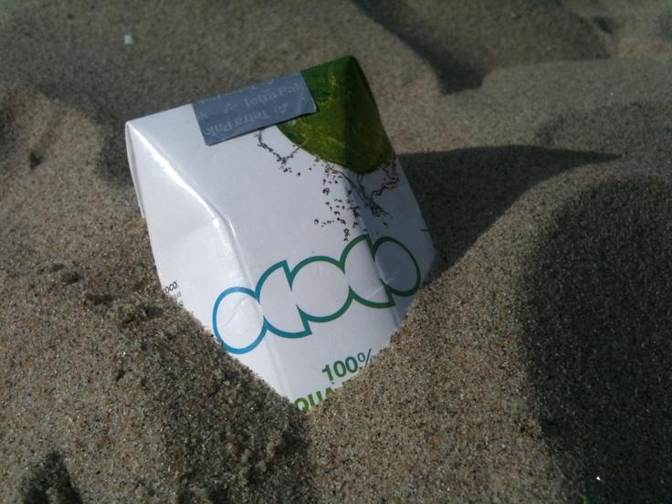 Ococo from the beach