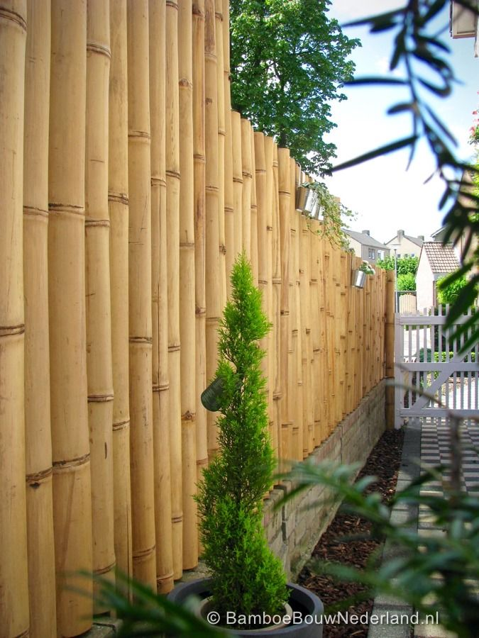 25 best ideas about schutting op pinterest schutting tuin hekwerk en hek - Bamboe hek ...