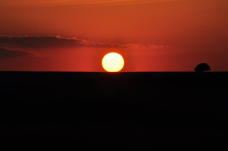 Puesta de sol en Masai Mara. Kenia. Que cosa tan guapa.