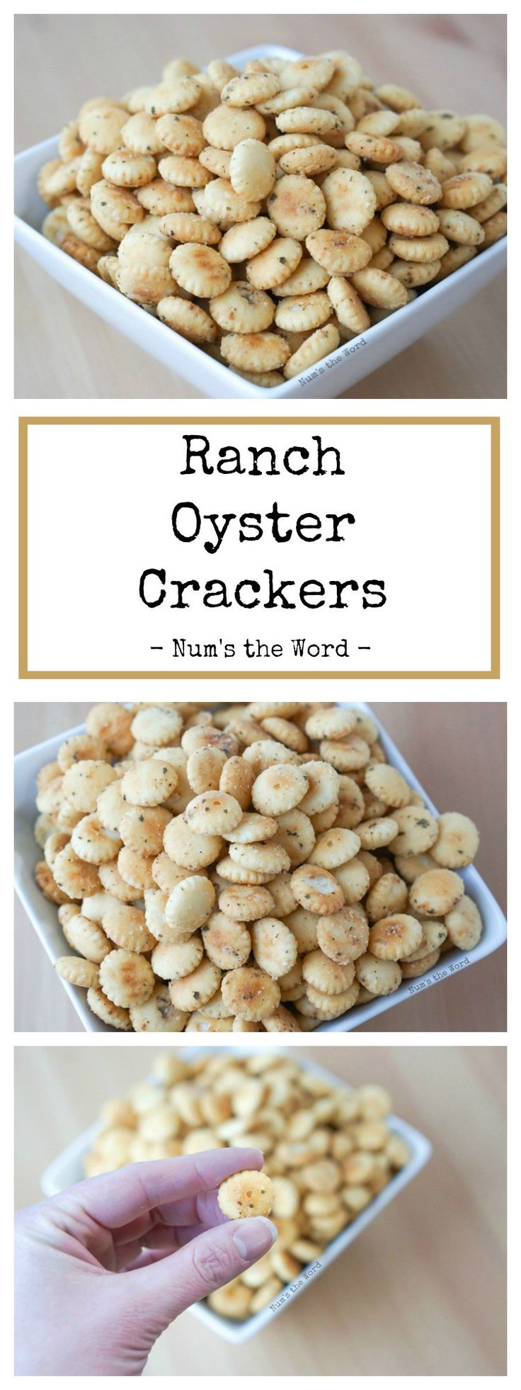 Ranch Oyster Crackers are the perfect snack or addition to your favorite tomato soup! With only 3 ingredients, these little crackers will quickly become your new favorite snack!