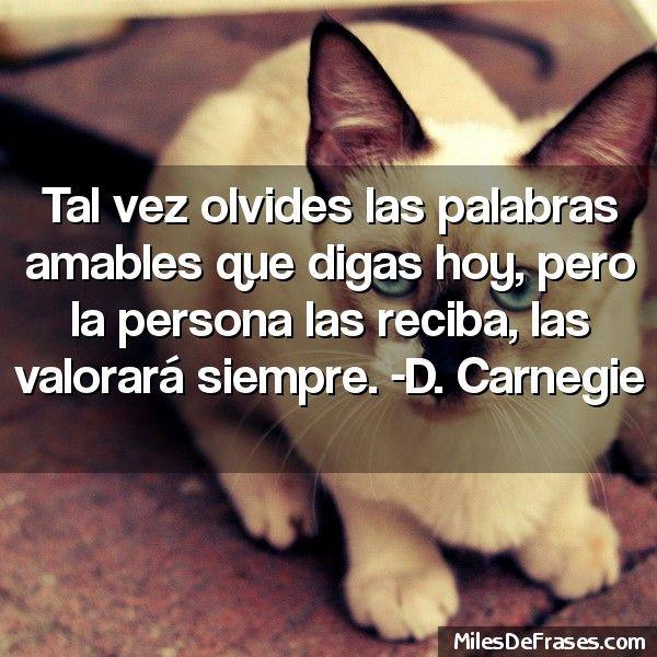 Tal vez olvides las palabras amables que digas hoy pero la persona las reciba las valorará siempre. -D. Carnegie