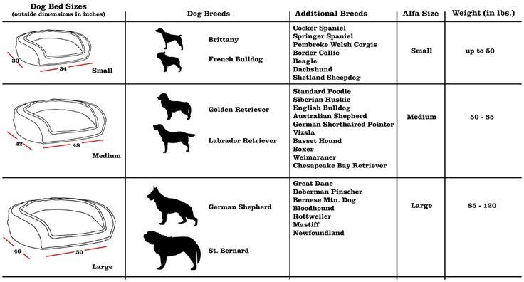 170 besten piccomundo cute dogs bilder auf pinterest haustiere hunde und hundebetten. Black Bedroom Furniture Sets. Home Design Ideas