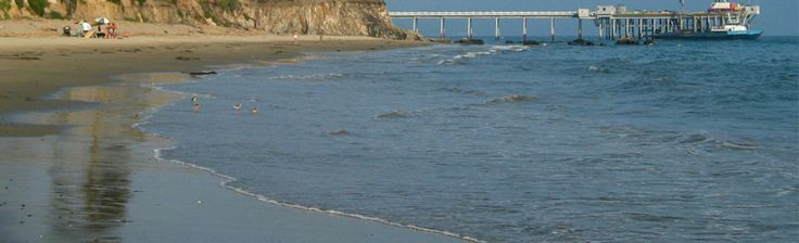 Carpinteria State Beach a mile of beach that offers swimming, tide pool exploring, camping, picnic area and seasonal dec-may seal and seal lion watching. Occasionally whale sightings