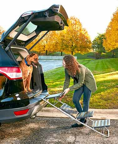 Make it easy for your furry family membersto get in and out of the car with this Fold Away 2-in-1 Pet Steps and Ramp. Its metal frame contains 4 plastic s
