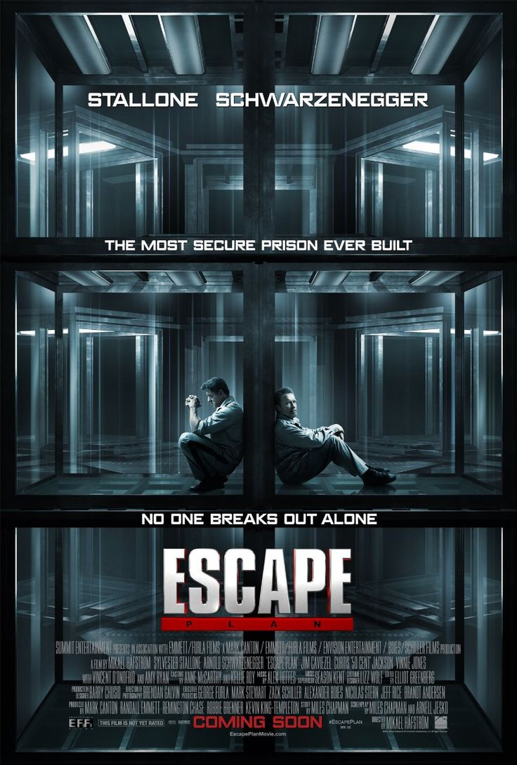 Escape Plan (2013)  Action | Thriller When a structural-security authority finds himself incarcerated in a prison he designed, he has to put his skills to escape and find out who framed him. Director: Mikael Håfström Stars: Sylvester Stallone, Arnold Schwarzenegger, Vincent D'Onofrio, 50 Cent