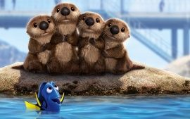 these otters were sooo cute! Comment if you've seen Finding Dory, I've seen it twice already! hey guys, please follow me and/or my disney board. I've been pinning a lot to it lately! More