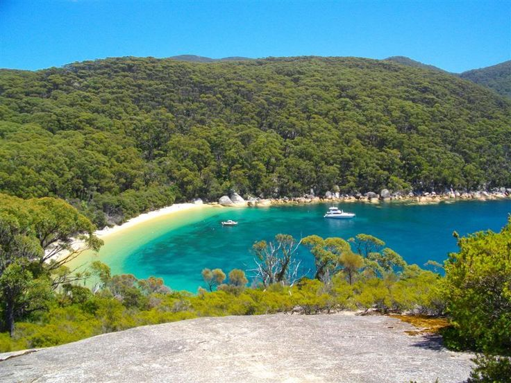 Sealers Cove - Trailstops: Scribe's Notes : Wilson's Promontory