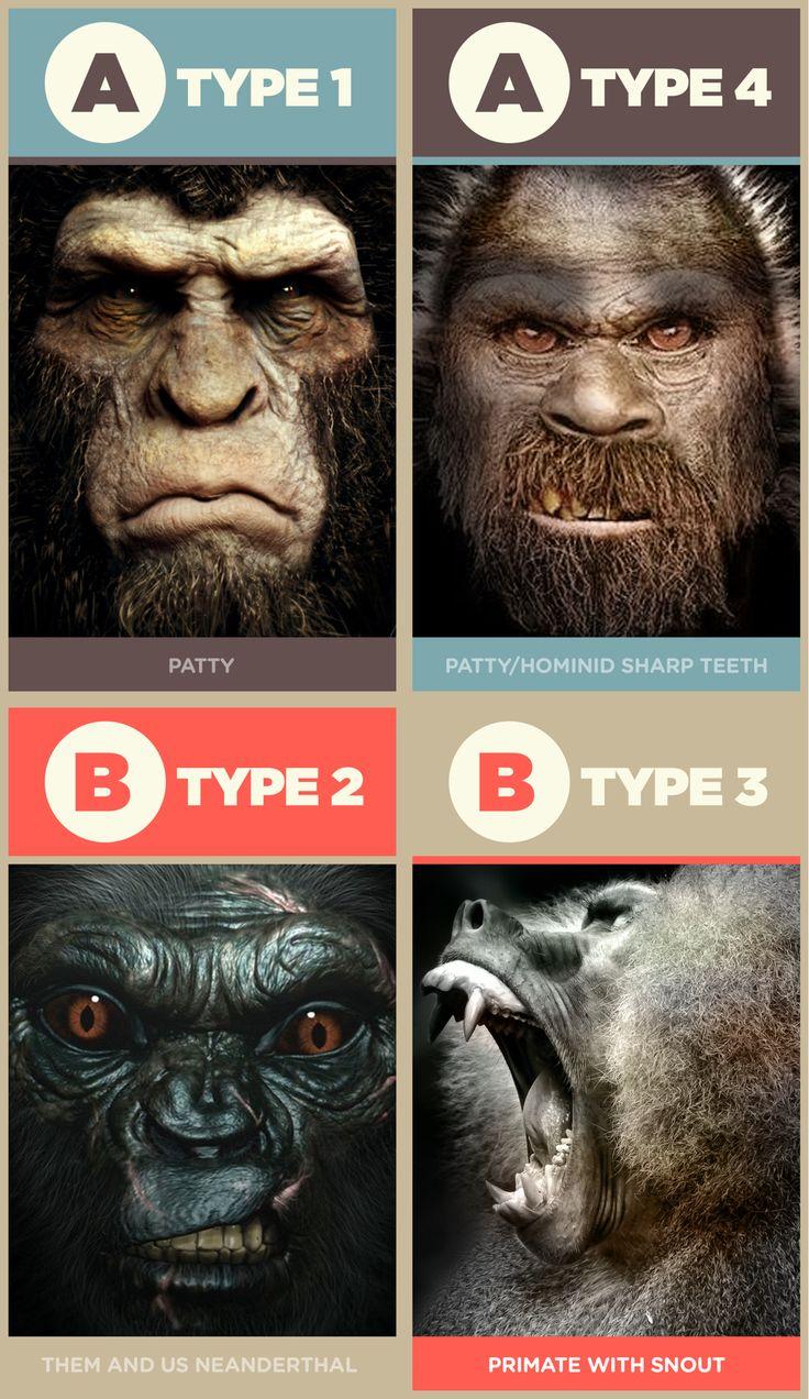 The 4 Bigfoot types. Sasquatch Subspecies.   SASQUATCH, I ...