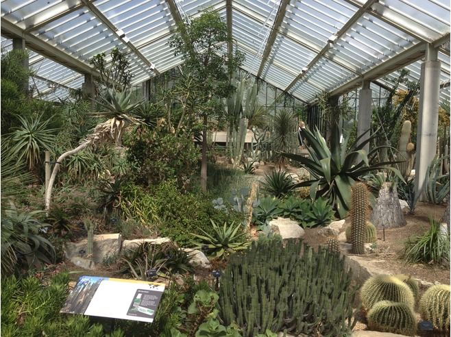 Royal Botanic Gardens, Kew - London (UK)