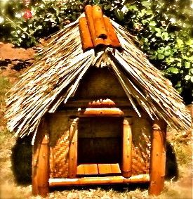 This tiki dog house is the perfect addition to any beach lover's backyard!