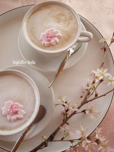 Sakura and coffee