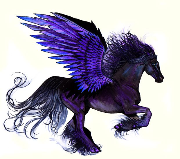 Midnight Pegasus by Ri-BobRibbon.deviantart.com on @deviantART