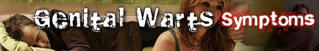www.hpvinmen.co  genital warts symptoms