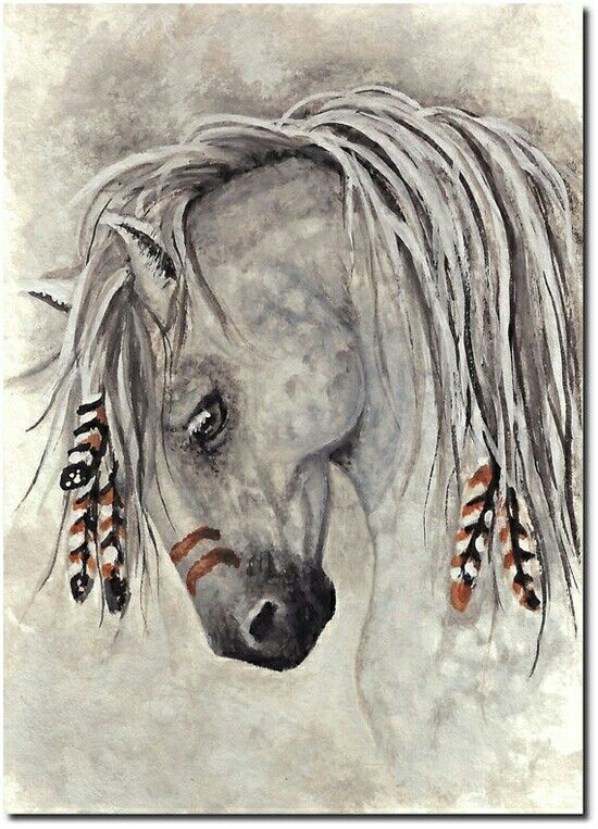 Top 25 Ideas About Caballos Indios On Pinterest