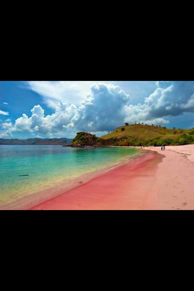 Pink Beach. Lombok, Indonesia.
