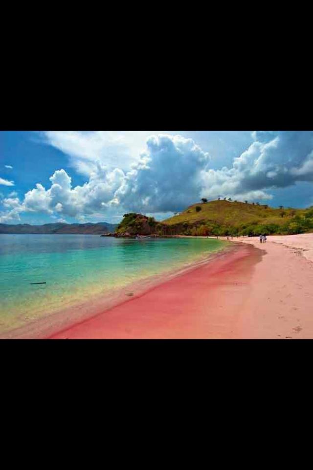 Pink Beach. Lombok, Indonesia.