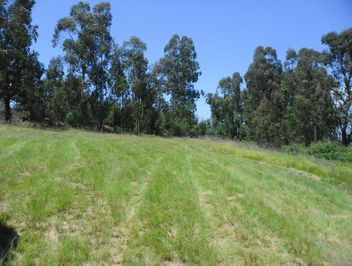 Vacant Land For Sale in Rosetta | Wakefields Estate Agents