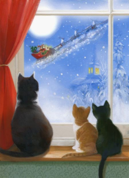 Lisa Alderson - LA - cats in window.jpg