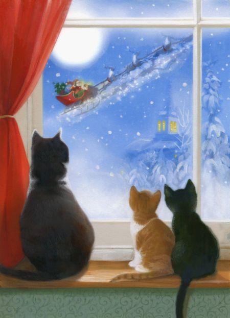 Lisa Alderson - LA - cats in window.jpg
