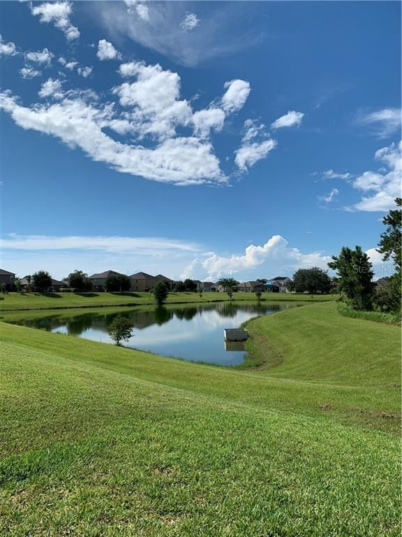16459 Centipede St Clermont Fl 34714 3 Bed 2 5 Bath Single Family Home For Rent Mls O5886978 31 Photos Trulia Clermont Renting A House Lake County