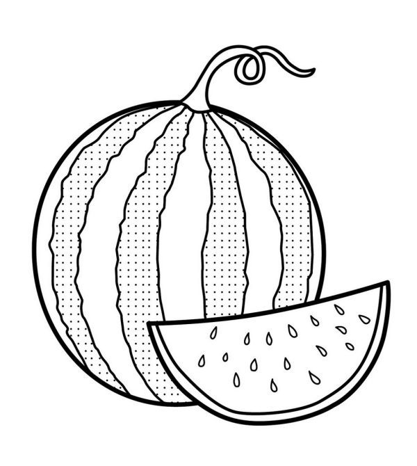 Fresh Image Of Watermelon Coloring Page Watermelon Images