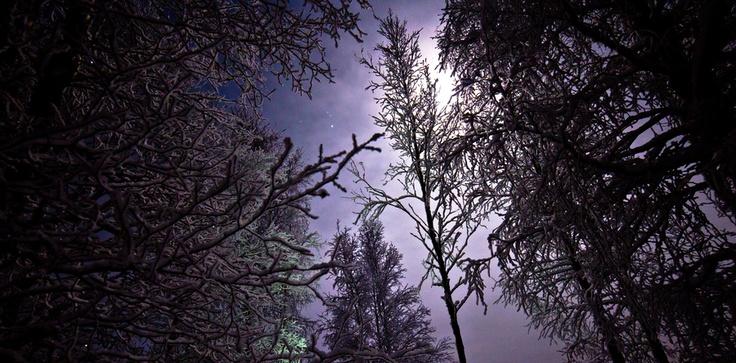 Frosty night in Finland