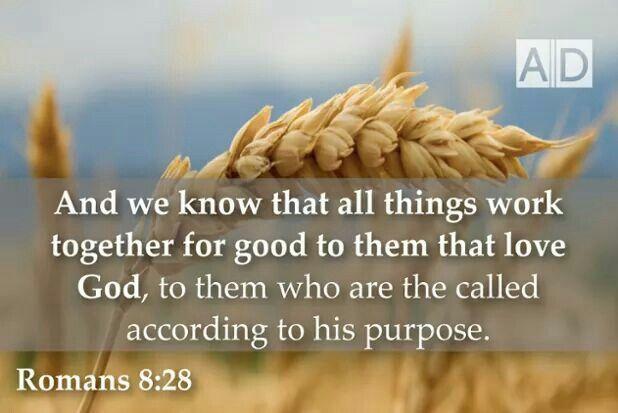 Romans 8 :28 KJV