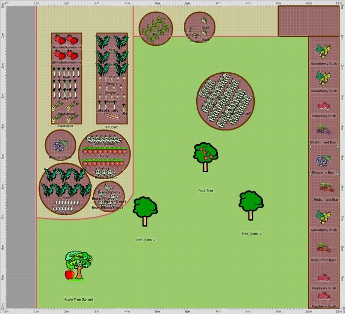 9 best borage images on pinterest herb garden herbs and. Black Bedroom Furniture Sets. Home Design Ideas