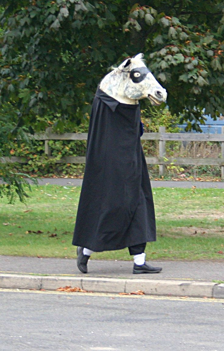 Stock - Morris Dancing Horse by GothicBohemianStock