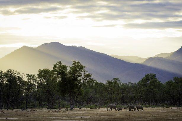 Imagine a Place - Ruckomechi Camp #Zimbabwe #ManaPools
