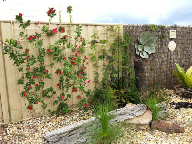 Colorbond Veggie Garden