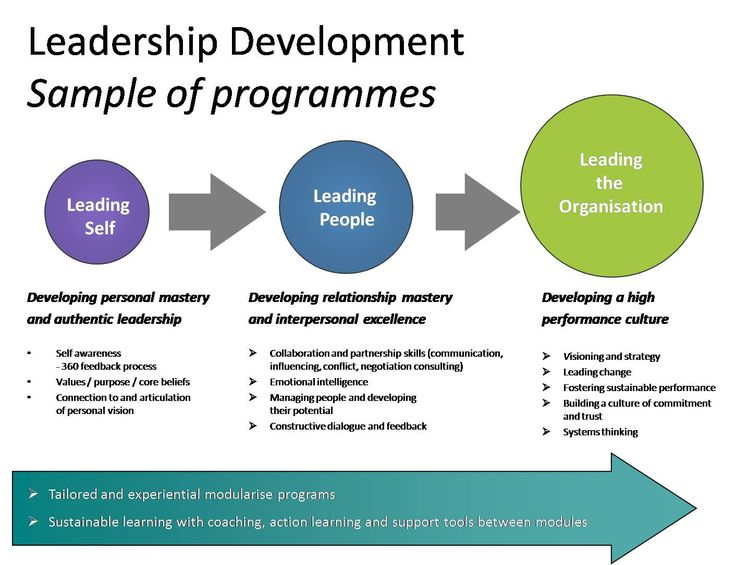 Developing leadership and a team