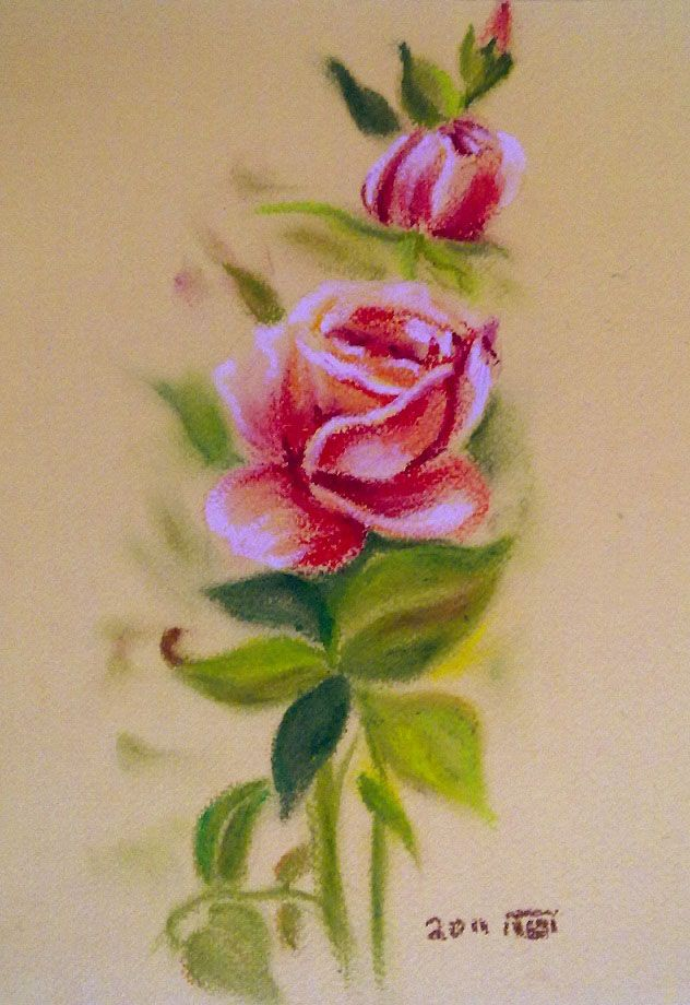 Roses : Oil pastel painting