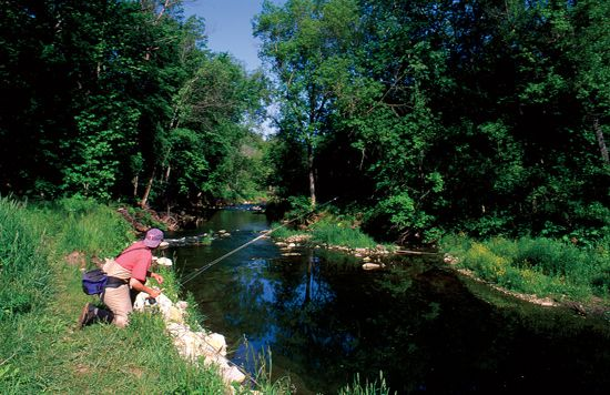 49 best images about things to use fly fishing on for Fly fishing iowa