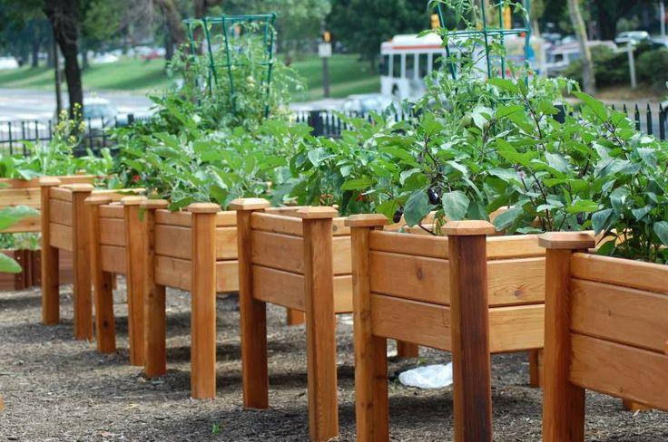 gronomics elevated garden bed 2