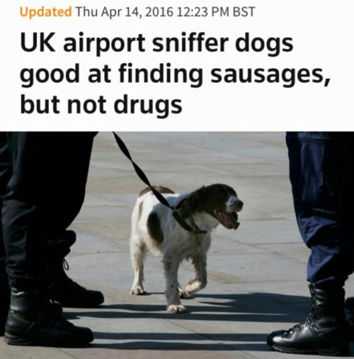 Stop the sausage smuggling via /r/funny...