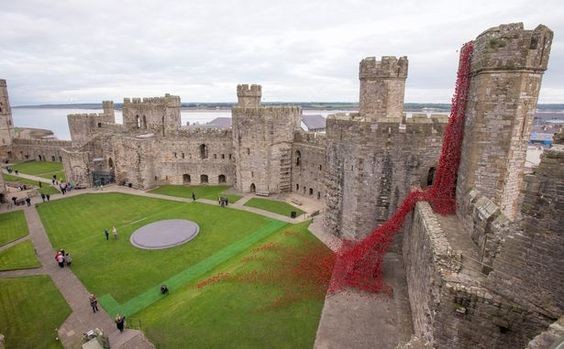 "Caernarfon Castle in Wales has recently opened a poignant tribute to the many Welsh soldiers who died in World War I: The Weeping Window.  The Caernarfon exhibit, entitled ""Weeping Window"", is made up of more than 6000 red ceramic poppies. Observers have noted that the stunning Caernarfon Weeping Window display looks like a red dragon's foot."