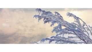 C'est l'hiver ! https://www.youtube.com/channel/UCR-CxHQgfIPcFYET7xQp5Ag