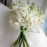 Classic White Orchid Toss Bouquet