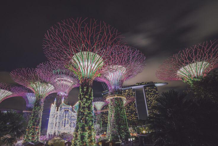 Singapore Merlin Kafka Instagram | Facebook | 500px | Portfolio