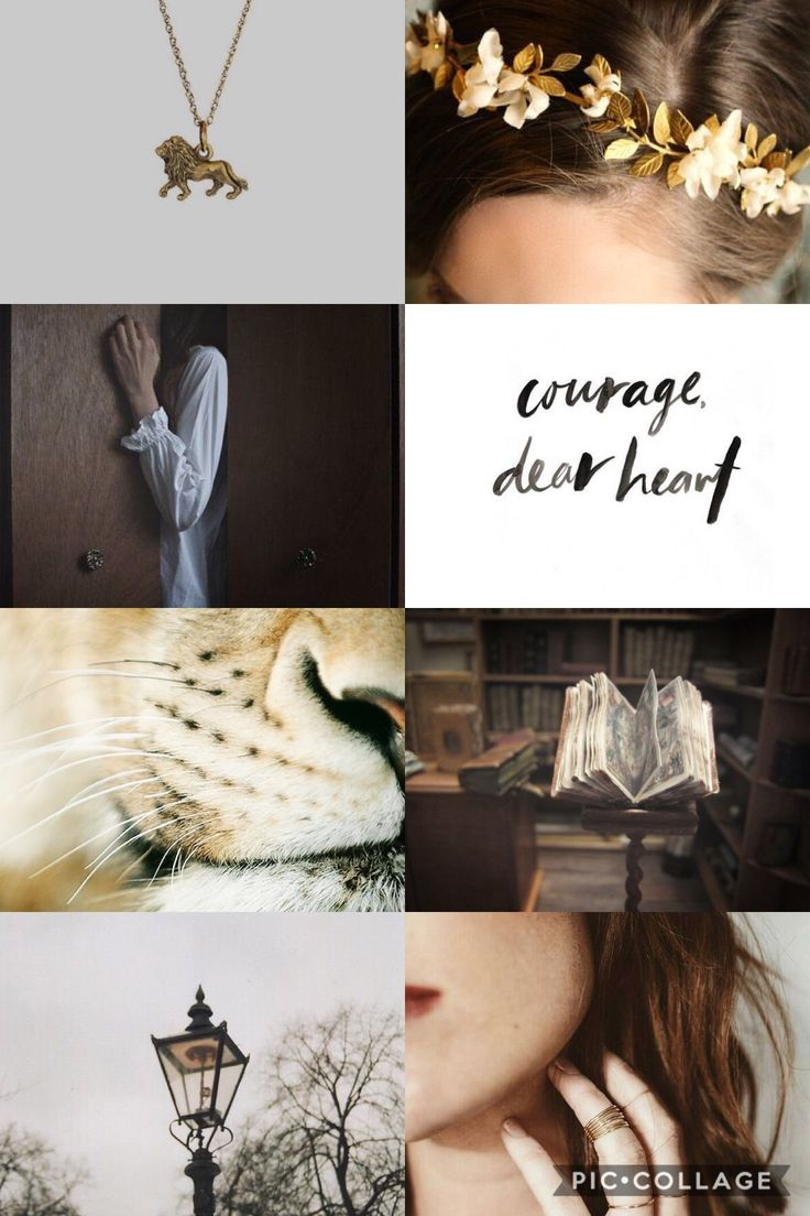 Lucy Pevensie aesthetic