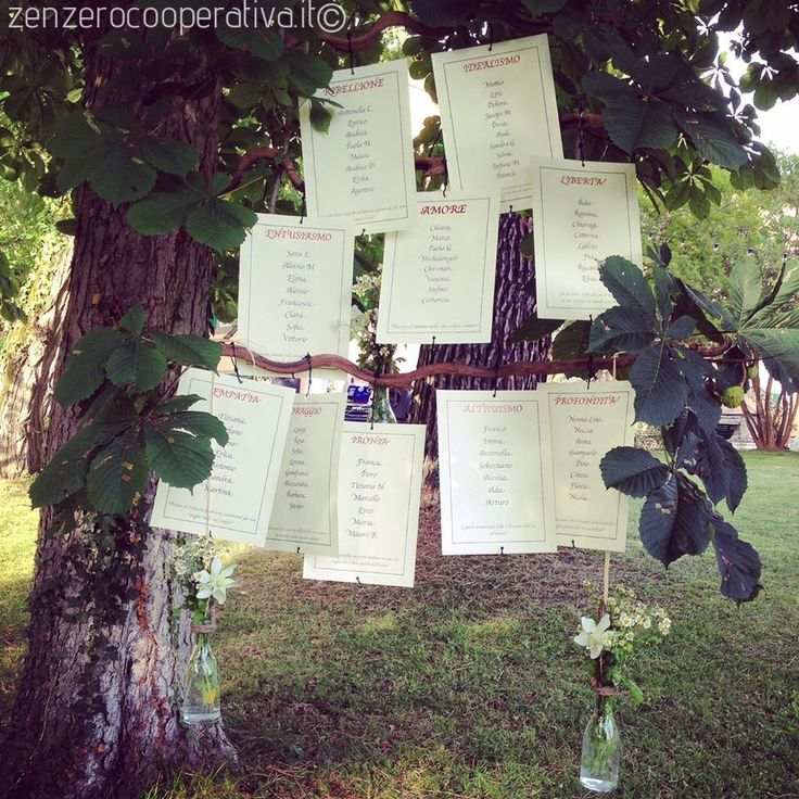 #Tableau de Mariage/Wedding Table Plan on a tree. For a real #green #wedding!