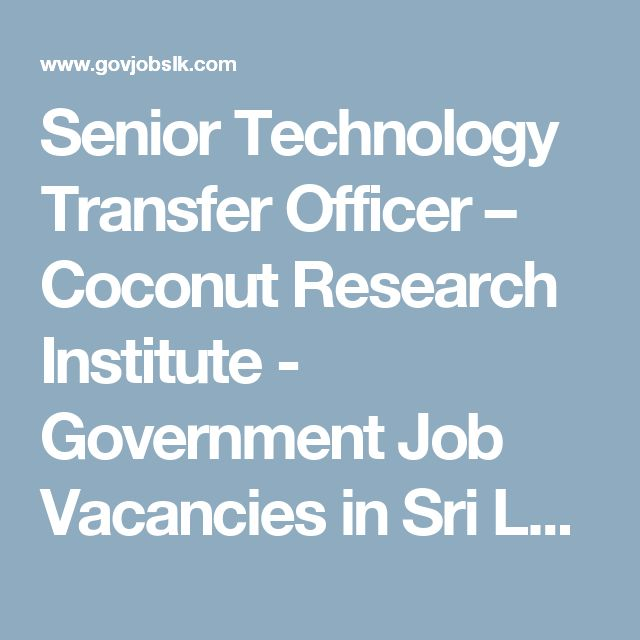 Senior Technology Transfer Officer – Coconut Research Institute - Government Job Vacancies in Sri Lanka